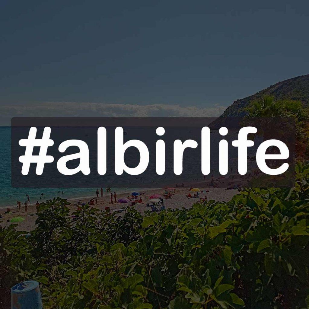 hashtag #albirlife